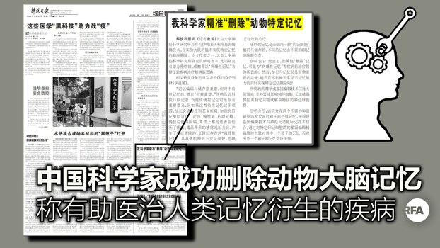 中国科学家成功精准删除动物大脑记忆