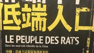 派屈克·圣保罗的《低端人口》。(封面照片)