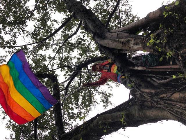 推动同性婚姻三十年祁家威在雨中爬树摇彩虹旗为同性恋朋友打气。(记者夏小华摄)