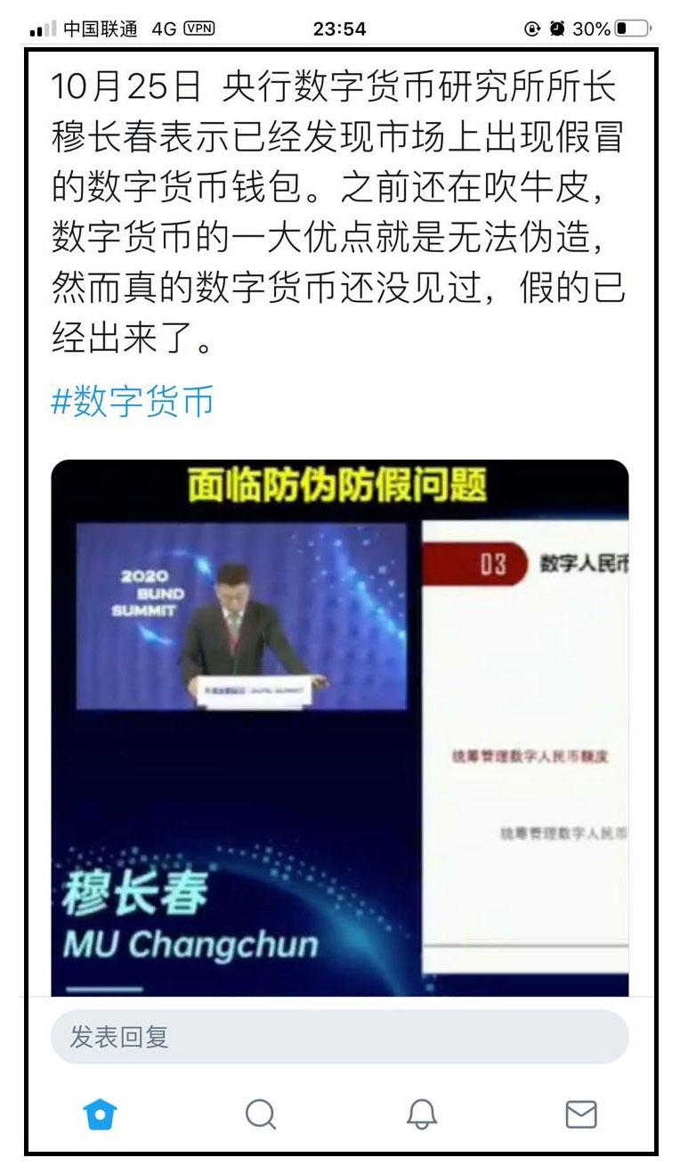 网民评论央行数字货币研究所所长所言。(手机截图/乔龙提供)