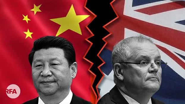 中国疑再禁红酒、龙虾进口  中澳关系为何一再跳水?(自由亚洲电台制图)
