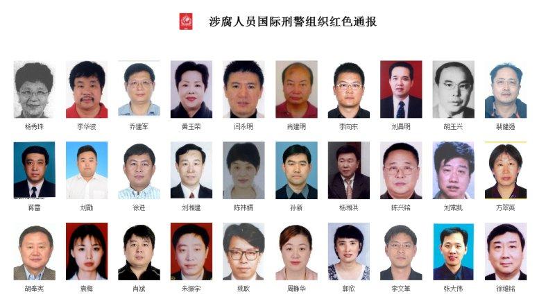 2015年中国首度发布百人红色通缉令(网页截图)
