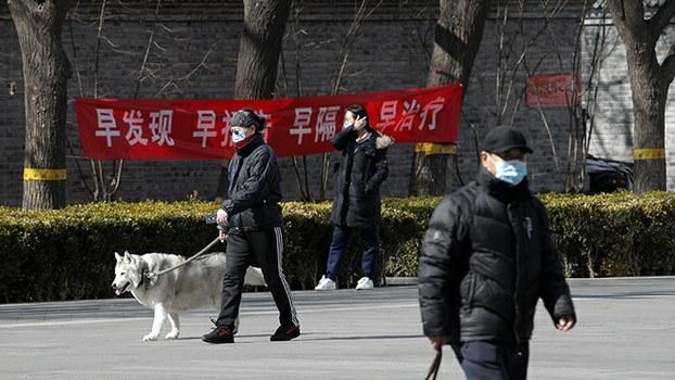 资料图片:一名北京居民2020年3月1日在街头遛狗。中国政府近日进一步制定关于畜禽目录的意见稿,以明确可食用畜禽的类别,狗则不包括在其中。(美联社)