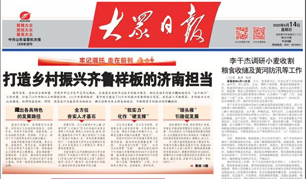山东第一大报大众日报对乡村振兴的政治宣传(Public Domain)