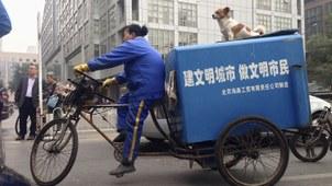 """中国在""""文明养狗""""政策风向下,却推行不文明执法,文明两字显得格外反讽。(路透社)"""