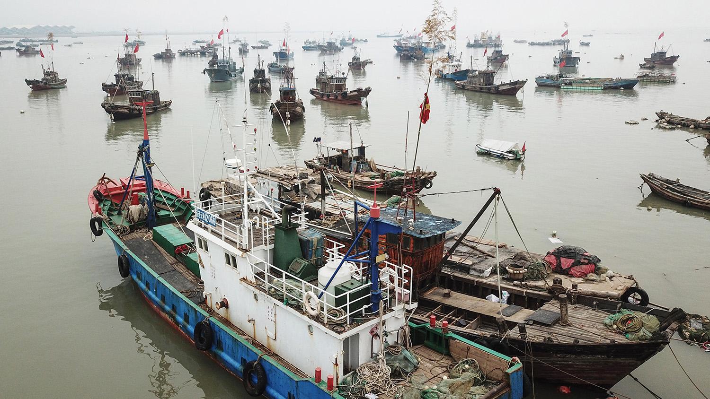 中国渔船数量居全球之冠,渔具管理存在各种难题。(法新社)
