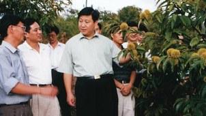 担任福建省长期间的习近平(中)。(Public Domain)