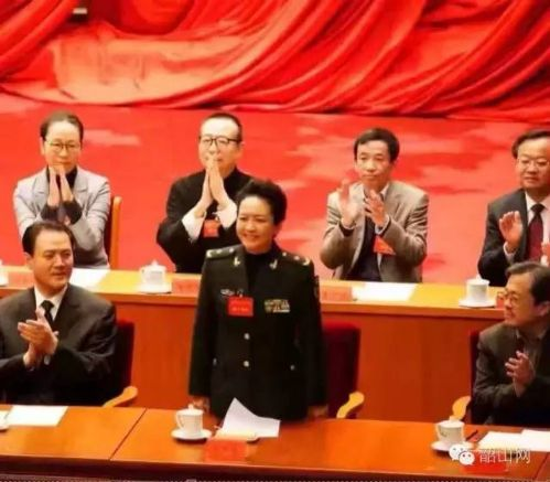 彭丽媛出任文联副主席。(微信图片)
